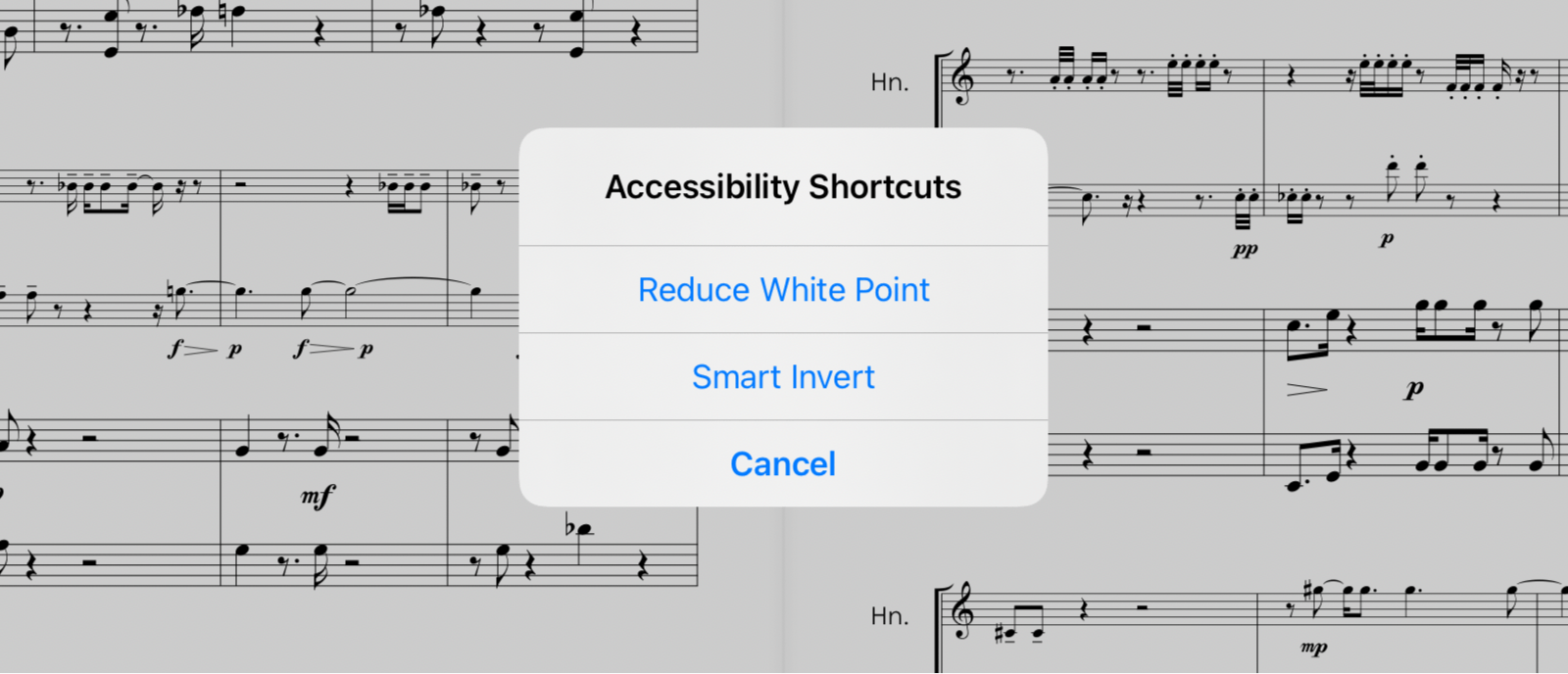 Accessibility Shortcut toggles
